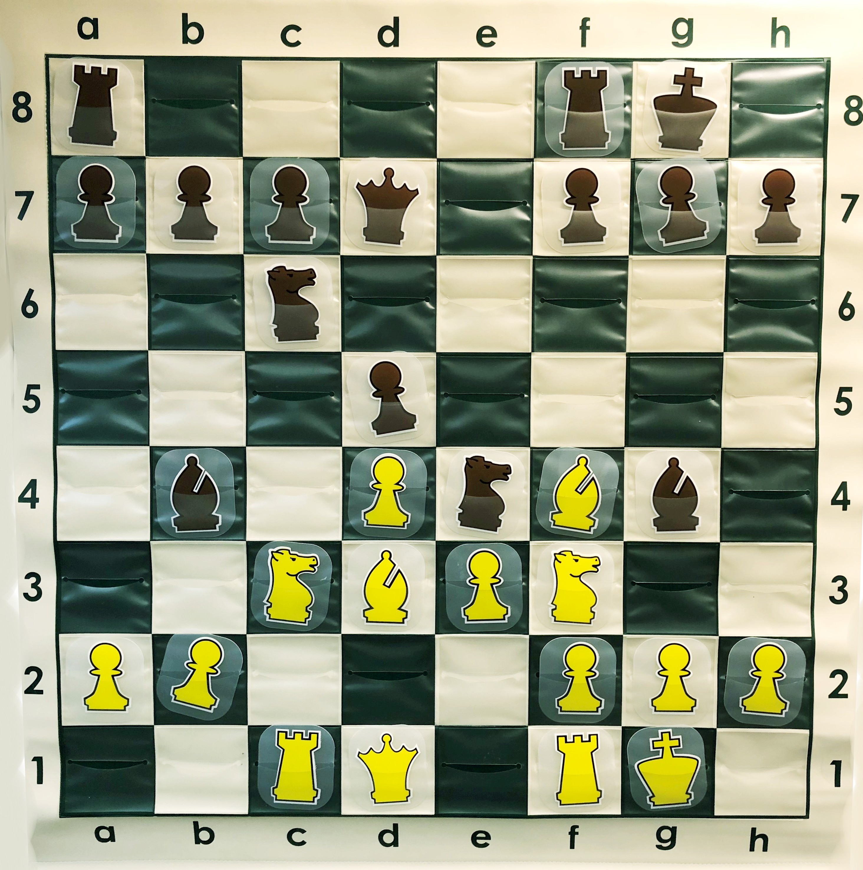 Chess Middle Game Books