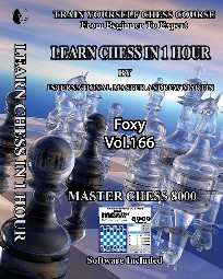 Foxy Chess 166 - Learn Chess In 1 Hour - IM Andrew Martin